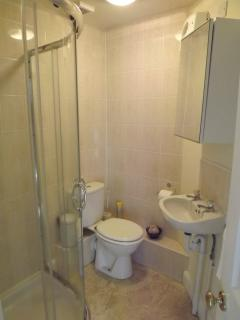 Coedmor Harbour Cottage Shower room