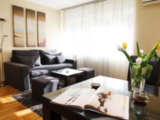 TOP CENTRAL modern 1BR Apartment in ❤ of Belgrade - Dorcol Old town