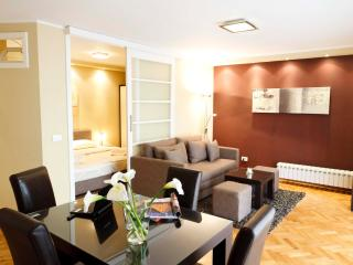 Amazing One Bedroom DOWNTOWN Apartment LITTLE BAY, Belgrade