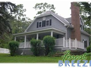 Forest Breeze Guest House