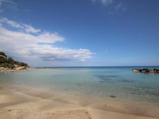 Villa Vyzakia 1 min walk to the beach - Protaras