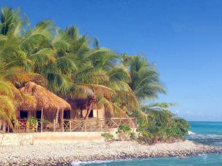 Enjoy snorkeling right at Coterelle Breeze.