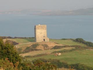 Rincolisky Castle, Cork