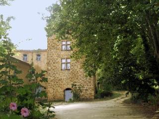 Domaine de Castillou au coeur du Pays Cathare, Couiza
