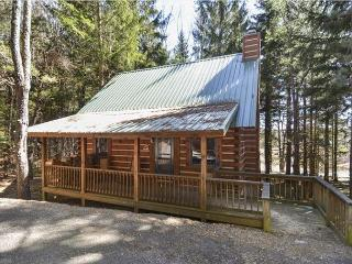 Cozy mountain cabin in a most convenient location for an incredible vacation!