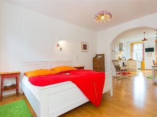 50m²  charming  fresh  and  bright !, Viena