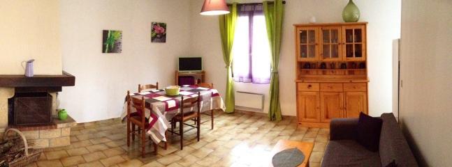 Salon / salle à manger avec tv et cheminée