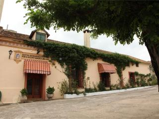 Holiday Villa in Valencia, Alzira
