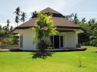 1 bedroom beach front villa in dauin