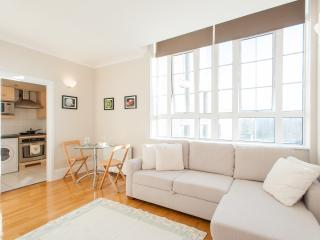 Grange Yard Apartment, London