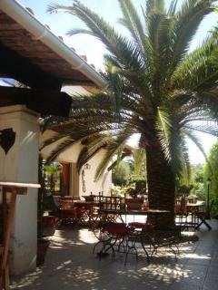 ouverture et arrivée sur notre TERRASSE avec tables & chaises...ombragée sous notre palmier
