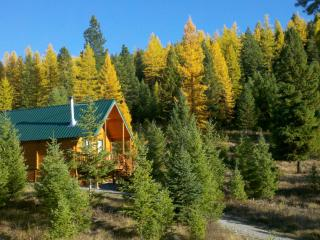 This is in the fall when the Larch trees turn bright yellow right before they fall off.