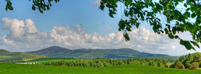 Galloway hills behing Orroland estate