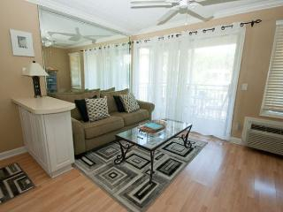 Seaside Villa 247 - 1 Bedroom 1 Bathroom Oceanside Flat  Hilton Head, SC