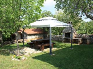 Rustic house in Visnjan with huge garden, pet friendly, free bikes