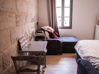 Beautiful Studio in Avignon Center, Pet-Friendly and Air Conditioned