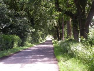 The lane to Tullycross Cottage, just 1/2 mile to the village of Croftamie & 2 miles to Drymen