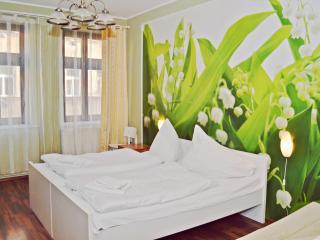 Green Cimburkova Apartment Ruterra, Praag