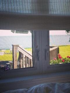View from Lark's Cottage bedroom.