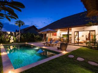 Modern balinese villa