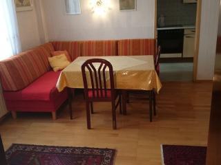 Donau-Apartment: zentral für Urlaub + Kongress, Viena