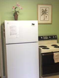 Full Kitchen Refrigerator and Stove/Oven
