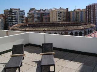 Malaga Center Flat. Solarium Penthouse.