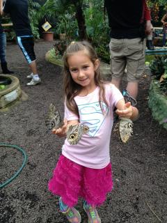 Enjoy the Butterfly Farm at a 10 minute walk & see how many butterflies want to hang out on you!