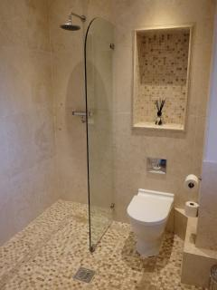 Downstairs wetroom