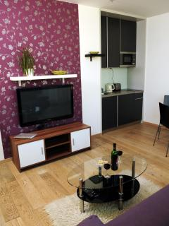 living room with kitchenette and satellite television