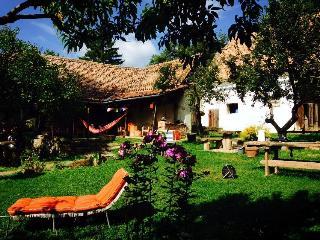 Casa Noah - The Yellow House - Richis Village, Medias