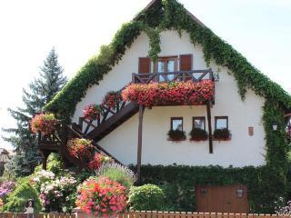 Apartment Route du vin Centre Alsace, Bas-Rhin