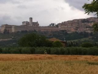 Il Gelso-Assisi-