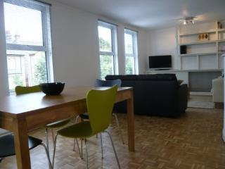 Spacious open plan dining and living area