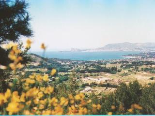Port Vignoble, La Cadiere d'Azur