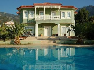 Yesil villa