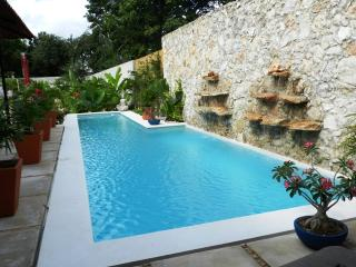 Contemporary Home with Lap Pool and Outdoor Shower, Merida