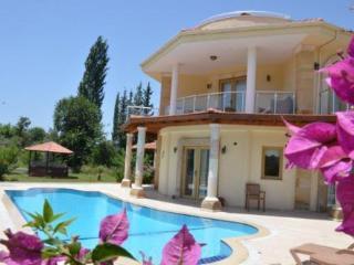 Villa Narenciye