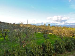 Appartamento Bianco, Vinci Toscana, Cerreto Guidi