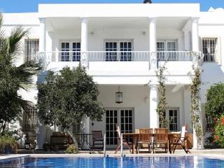 Exclusive Luxury Home - VILLA SATSUMA, Bodrum City