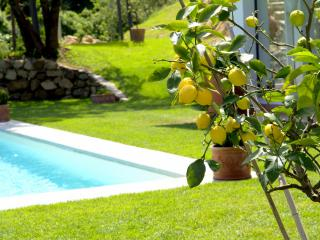 Villa Limona, Rignano sull'Arno