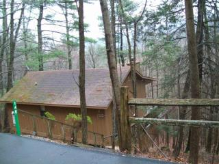Helton Falls Lodge-Bear Getaway cabin-walk to fall, Blairsville