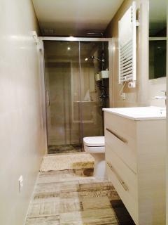 Aseo con ducha doble ( tres posiciones y alcachofa en techo) , toallero electrico y secador.
