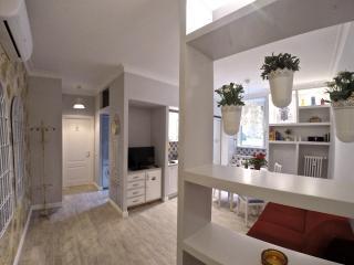 Domus Flaminio - holidays apartment, Rome