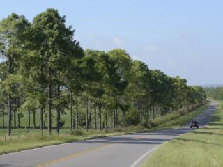 ruta 56 camino a nuestro predio , con hermosos paisajes serranos