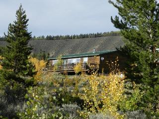 Scenic Mountain Cabin,  Leadville