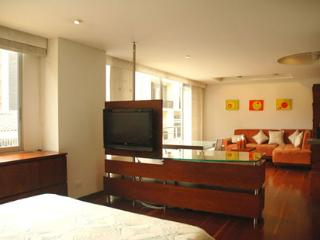 Luxurious apartment, Bogota