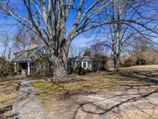 CARBG - COTTAGE IN THE HEART OF DOWNTOWN EDGARTOWN, WALK TO VILLAGE CENTER AND HARBOR AREA, HUGE TREED BACKYARD FOR YOUR OUTDOOR ENJOYMENT, Edgartown