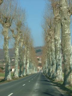 Avenue Lamothe, proche de Brioude.