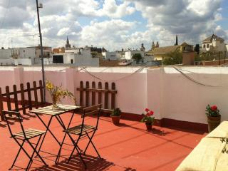 [69] Lovely studio apartment with private terrace, Seville